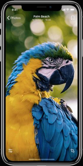 iPhone-photos2b